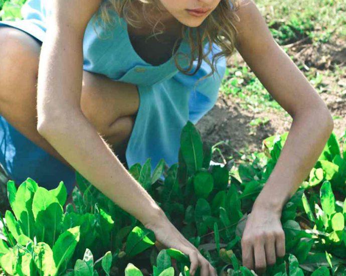 Survivalist Gardening